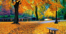 Осенние каникулы в Казани 2017